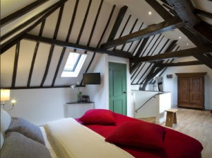 Villa Rameau - Leiden Hote;